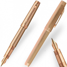 Parker Premier Monochrome Pink Gold Fountain Pen